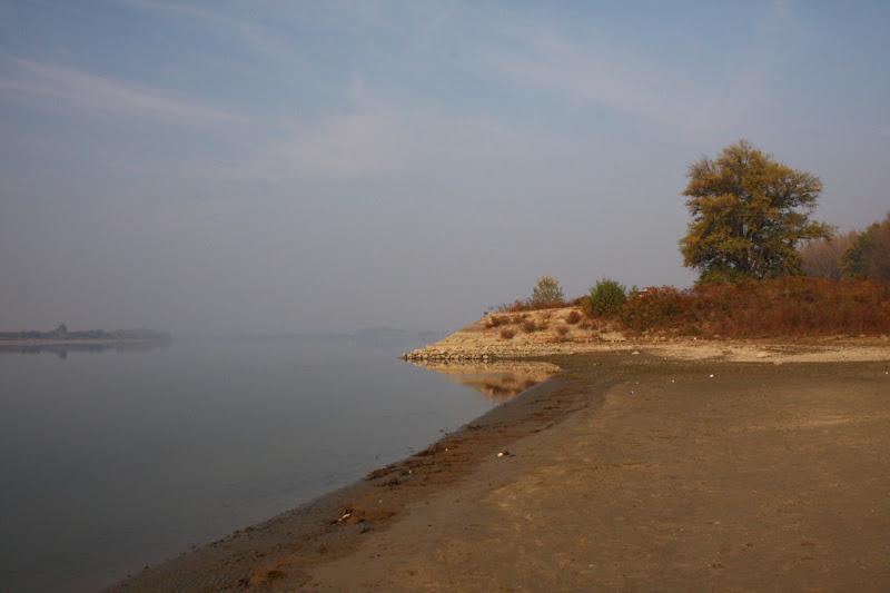 Mircea Dinescu conac Oltenia Dunare poezie ingeri plaja toamna