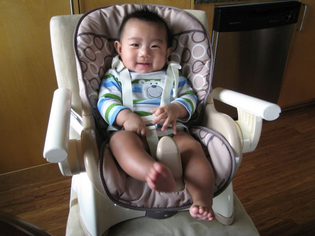 target fisher price high chair