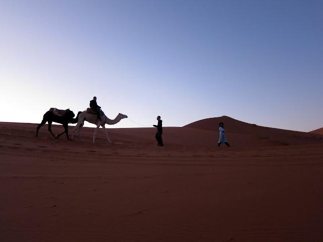 Camel trekking in Erg Chebby, Morocco