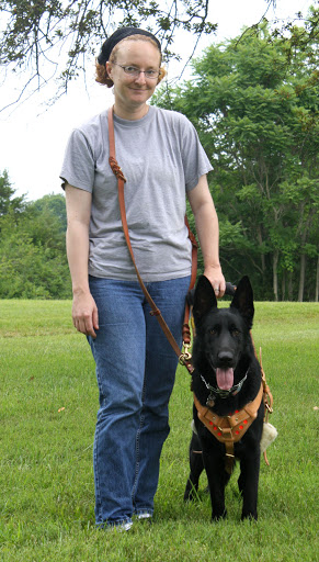 I stand to the left of the frame, a white woman of average build, about five feet eight inches tall and wearing a t-shirt and jeans. Sid's ears are obscuring the handle of the harness but you can see my hand grasping the cross-bar between them. I wear a leash looped across my body, one end attached to Sid's prong collar.