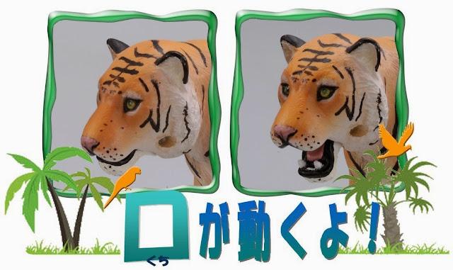 Hổ hoang dã Ania AS-05 có thể há rộng mồm rất dữ tợn