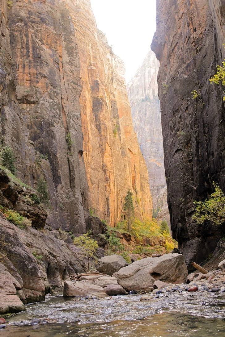 Zions National Park.