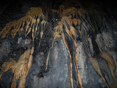 Llagrimals calcaris a l'interior de la cova d'en Cantero