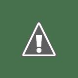 Mexico Construction