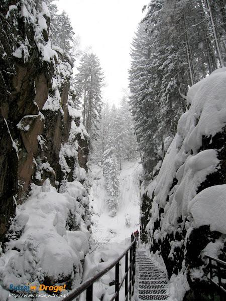 wąwóz kamieńczyka zimą