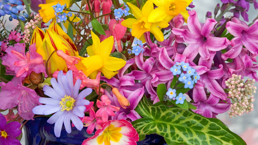 Spring Flowers From the Garden.jpg