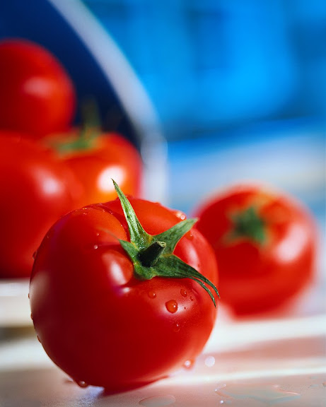 Wojna o pomidora