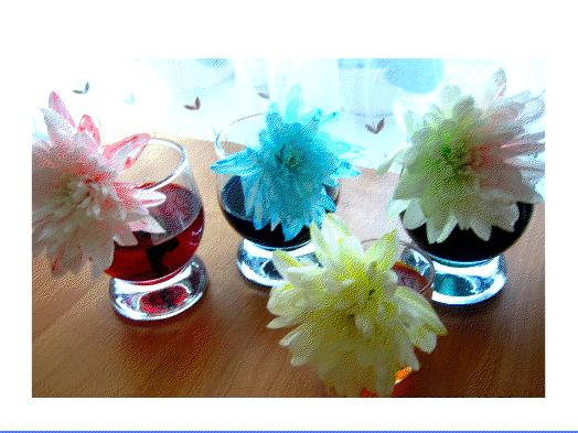 Samyye neobychnyye tsvety
