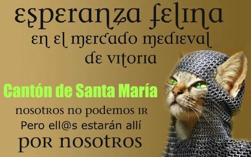 Esperanza Felina en el mercado Medieval de Vitoria  12177528%25255B1%25255D%252520Prueba%252520Direcci%2525C3%2525B3n