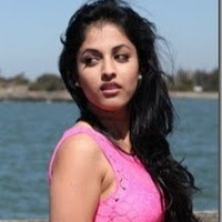 who is Reetu Sharma contact information