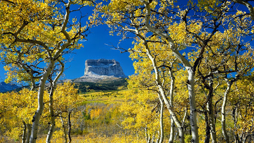 Mount Chief, Glacier National Park, Montana.jpg