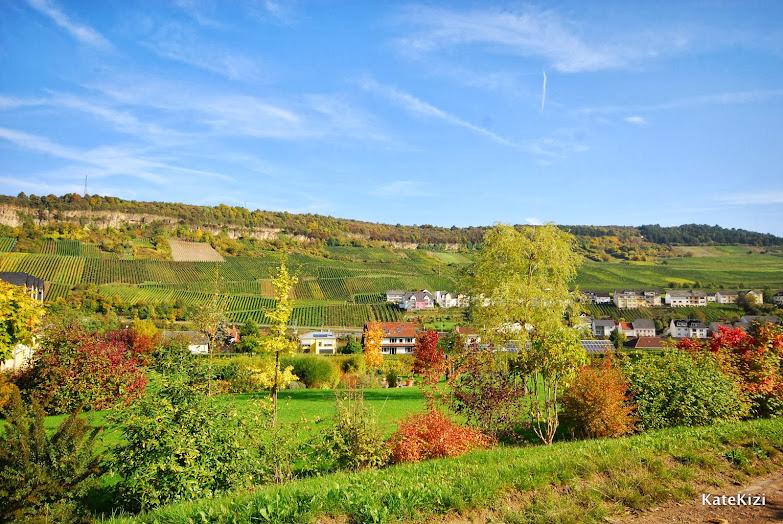 Виноградники  на горе - уже Германия