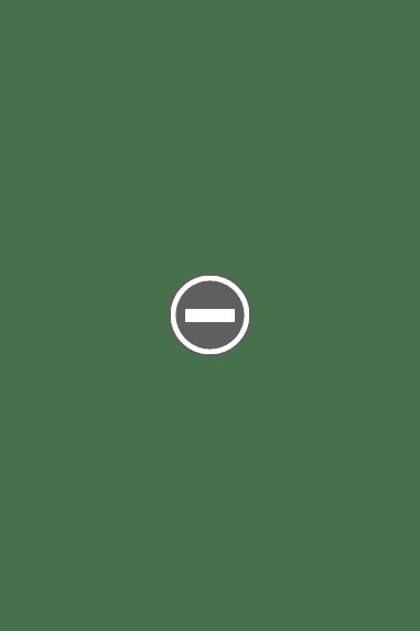 मराठ्यांनी आपली विजय पताका फडकवल्यावर त्या चर्चच्या दर्शनी भिंतीवर चंद्र आणि सूर्य हि हिंदवी विजयाची निशाणे तिथे लावली
