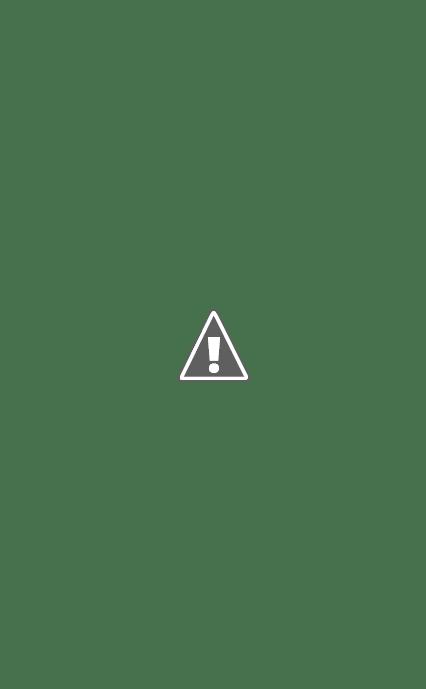 [Chaos SM : Projet/Conversion] Black Legion / World Eaters / Death Guard SAM_4134