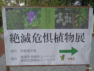 110925つくば植物園