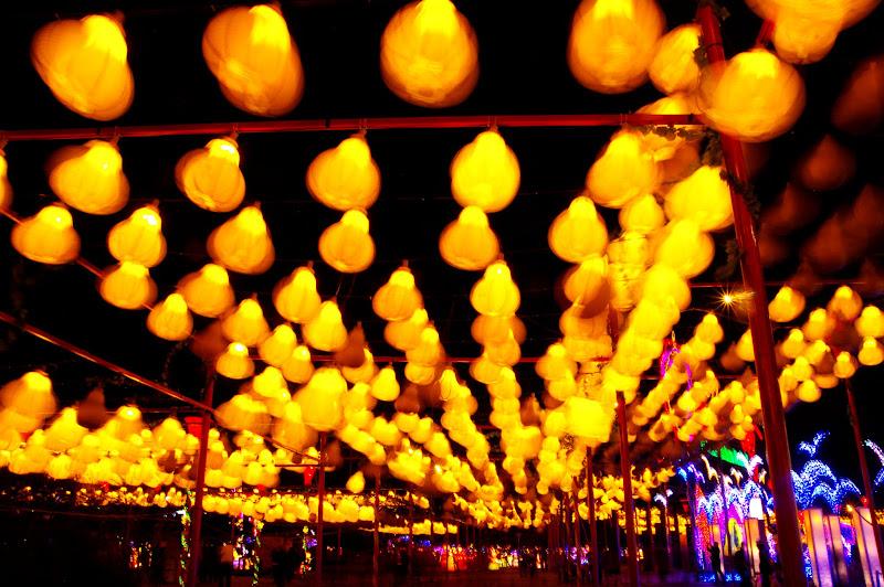 六級強風中的鹿港燈會