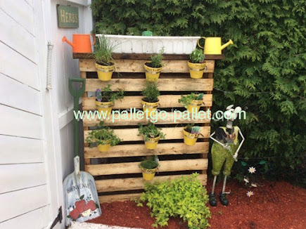 Hình ảnh tường dậu sử dụng tấm pallet gỗ bài trí chậu hoa cảnh