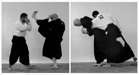Ninjutsu basics by Daniel Sheriff