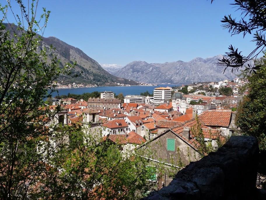 фото черногория в марте них рождаются