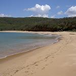 Maitland Beach (20564)