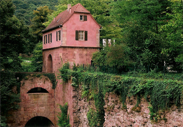Heidelberg Castle, 2011 photo