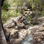 Rocky track west of Myron Brook  (382088)