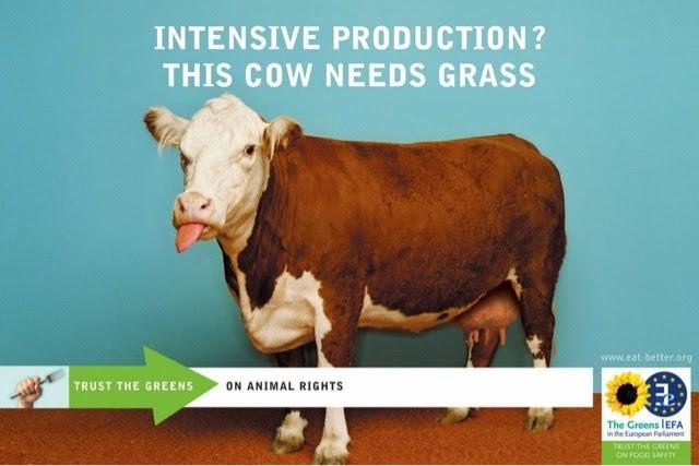 ganaderia intensiva partido verde europeo european greens leche ecológica
