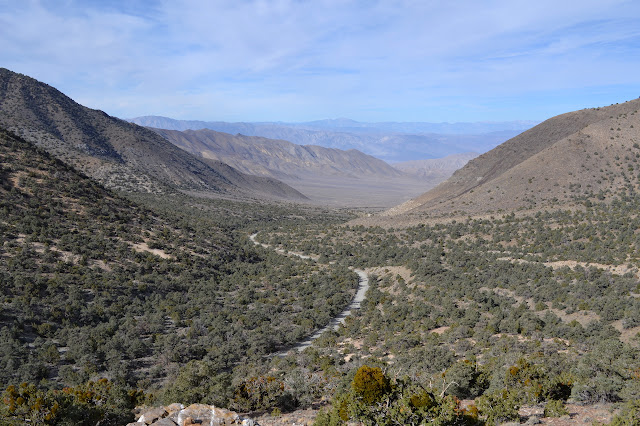 Wildrose Valley