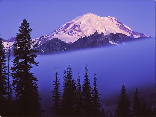 Rising Through the Fog, Mount Rainier, Washington.jpg