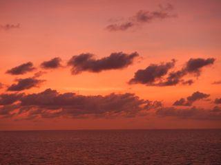 DSCN5628-2012-11-25-15-37.jpg