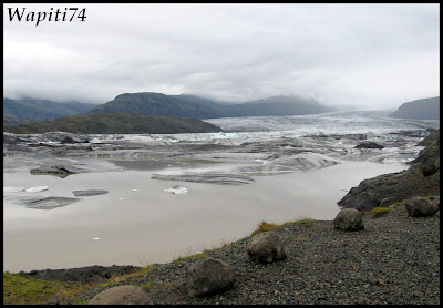 Un tour  d'Islande, au pays du feu... et des eaux. - Page 2 49-glacier