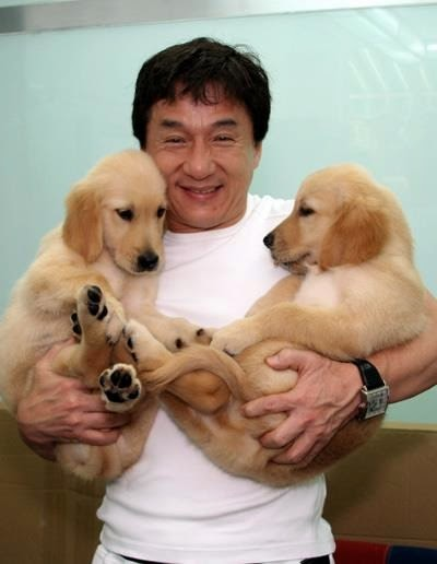 Jackie Chan and two dogs