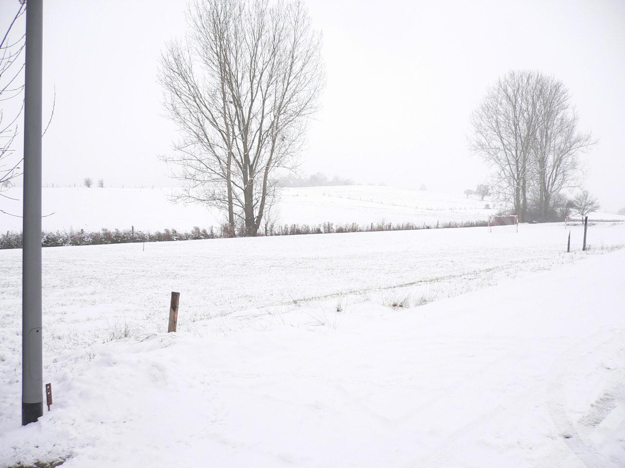 Danwood Haus Park 128P bei Idar Oberstein Dezember 2010