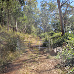 path up Mt Warramalong (65453)