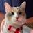 Michelle Chu avatar image