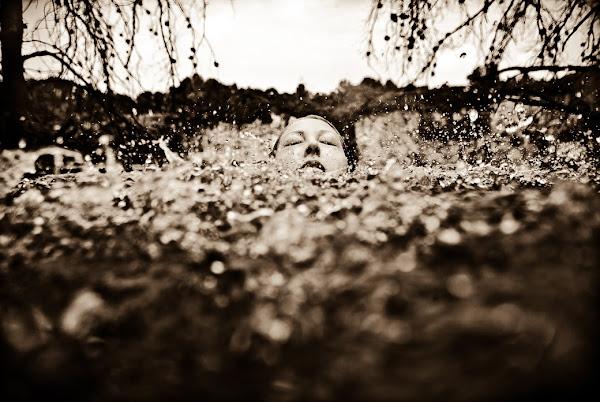 Neil Craver, Omni-Phantasmic Photography