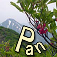 pan naa photo, image