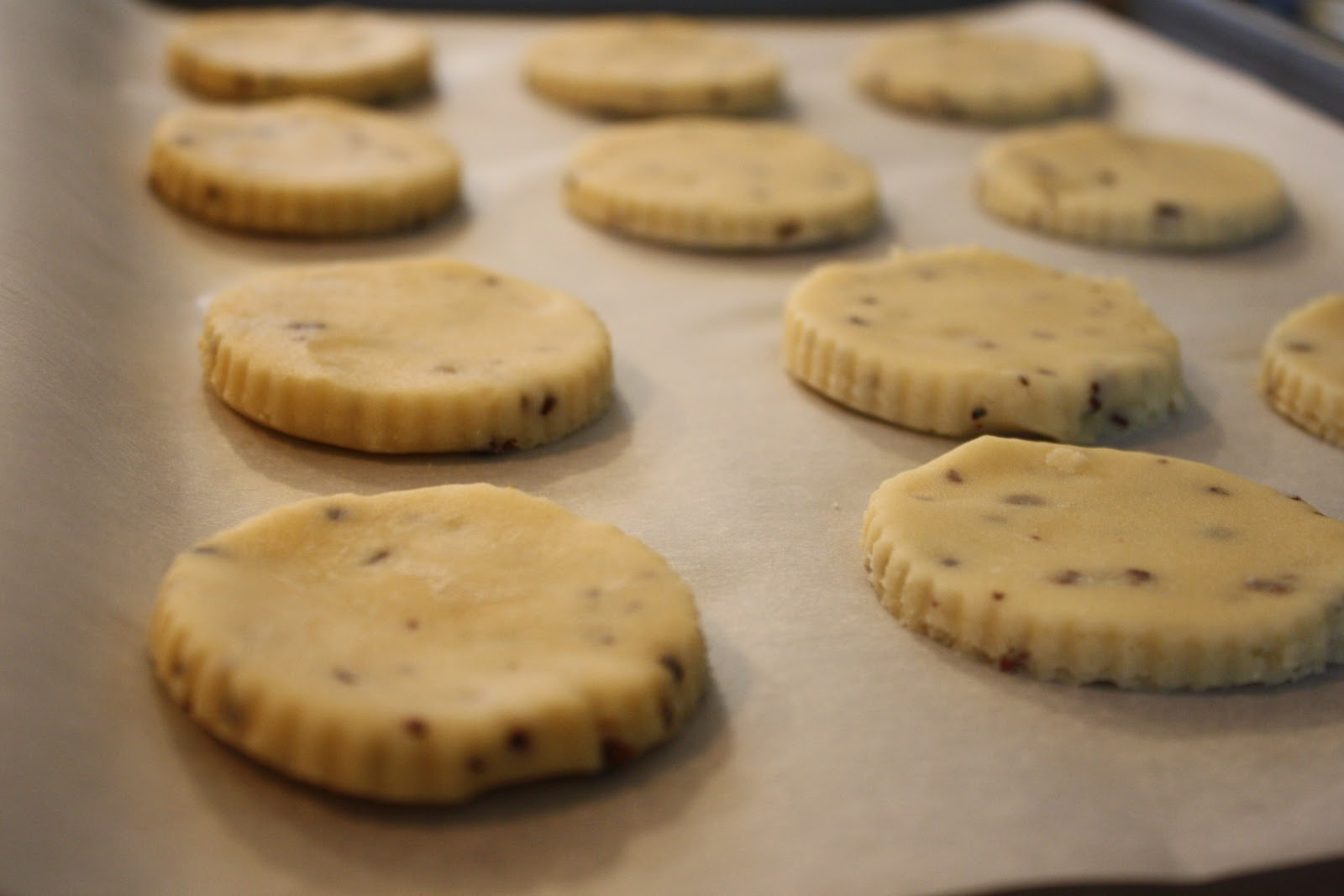 ... your World?: Day 114.5 Saint Paddy's Day Cacao Nib Shortbread Cookies