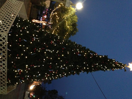 Culver City Xmas tree