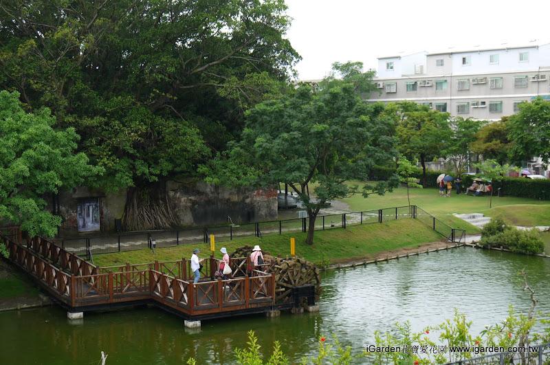 安平樹屋生態水池 | iGarden花寶愛花園