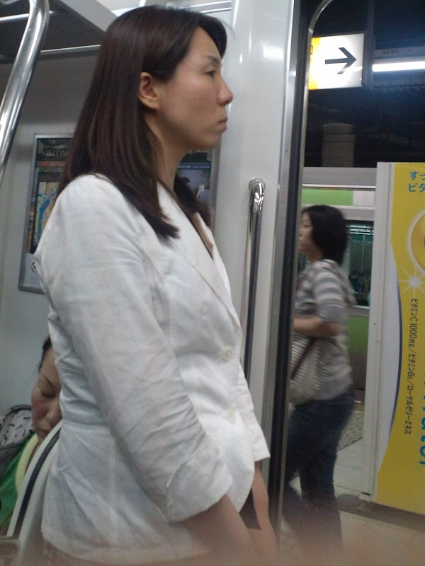 in the train [standing] vol.5 part 4(21photos):upskirt,picasa