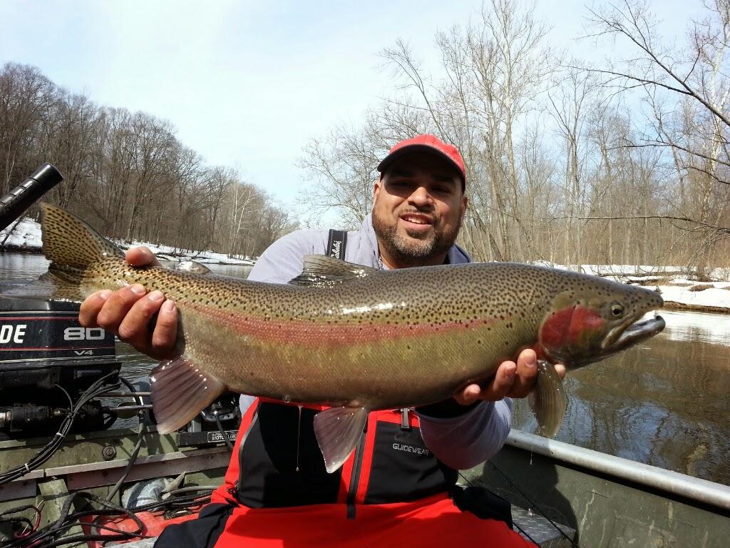 Muskegon River Steelhead Fishing Guide Trips