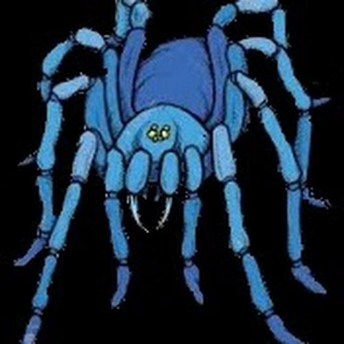 spidergaming23