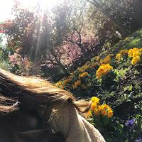 Hira Munawar's avatar