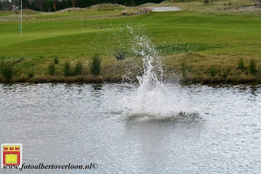 oudejaarsduik.Golfbaan overloon 30-12-2012 (51).JPG