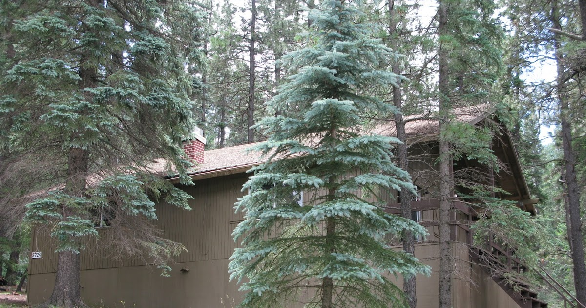 121526889918051389 together with Rental 20hse 20bthrm moreover I121wc9 likewise Cabins furthermore Photos. on lake cabins