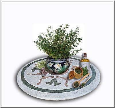 http://tunturuntun-com.blogspot.com.es/2011/03/tomillo-thymus-vulgaris.html