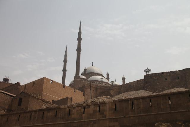 فى مصر الرجل تدب مكان ماتحب ( خاص من أمواج ) IMG_1597