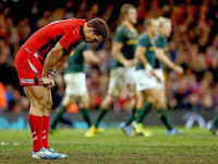 George North, Wales, South Africa, Defeat, rugby, Millennium Stadium, Cardiff, International