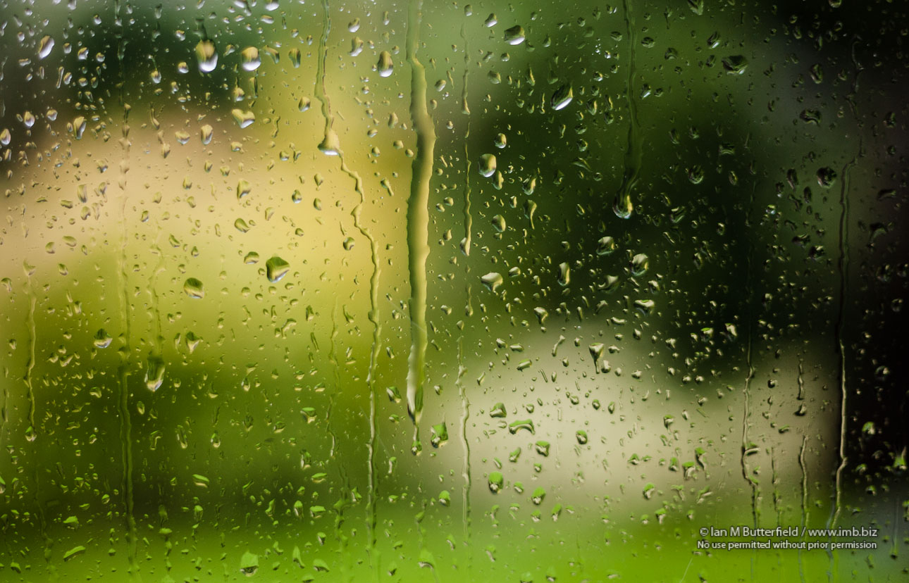 POTD Thursday, 28 Jan 2013 : Rain on a window